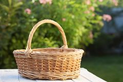 Empty basket in the garden. On the table royalty free stock images