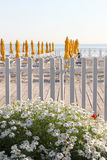 Empty bathing establishment, early in the morning. A view of a bathing establishment, with a  white wooden fence and some daisy in the foreground, at the beach Stock Images