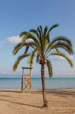 Empty Beach. Morning image of an empty Mediteraneean beach with a palm tree and a wooden lifeguard station, located in Mallorca, Spain Stock Photos