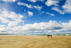 Empty Beach. Empty single bench on an empty beach Stock Photo