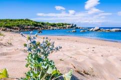 Empty beach with azure water on beautiful Sardinia island, Italy Stock Image