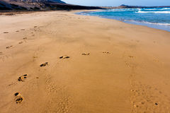 Empty beach in Cape Verde Royalty Free Stock Images