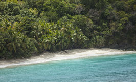 Empty beach in the caribbean Stock Image