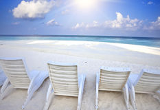 Empty beach chairs on sand by the sea Royalty Free Stock Photo