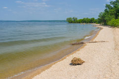 Empty beach on a Dnepr river Royalty Free Stock Photography