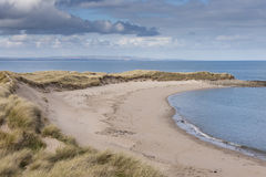 Empty beach. With dunes and sea Stock Image