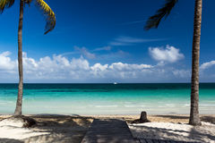 Empty beach on the island of Cayo Coco with palm trees. Empty beach on the island of Cayo Coco with palm trees, azure water, sunny day with clouds Royalty Free Stock Images