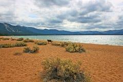 Empty beach on Lake Tahoe Royalty Free Stock Photos