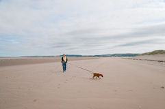 Empty beach with a man Royalty Free Stock Photo