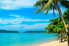 Empty beach with a palm tree on a tropical island. Vacation at the sea. Empty beach with a palm tree on a tropical island. Vacation at the sea Stock Images