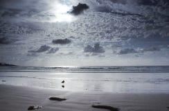 Empty beach in San Deigo, California. Afternoon at an empty beach in San Diego stock image