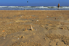 Empty beach with shells and man Royalty Free Stock Photography