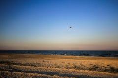 Empty beach Stock Image