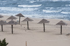 Empty beach with sunshades Royalty Free Stock Photography