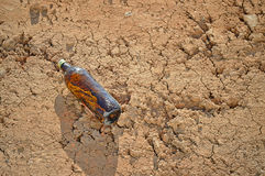 Beer Bottle - Empty Drink Litter Discarded Rubbish Royalty Free Stock Photos