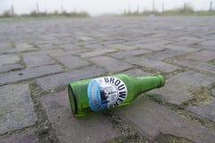 Empty beer bottle. DRIEL, NETHERLANDS - NOVEMBER 26, 2016: Empty beer bottle. Brouwers Pilsener is a Dutch pils beer that has been brought to market by Albert royalty free stock photos