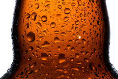 Empty beer bottle with water drops Royalty Free Stock Photo