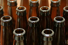 Free Empty Beer Bottles Stock Photos - 8264033