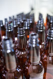 Empty beer bottles at bewery Stock Photography