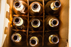 Empty beer bottles in paper cartons Stock Image