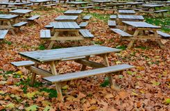 Empty beer garden in autumn Royalty Free Stock Photography