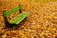 Empty bench in autumn Royalty Free Stock Image