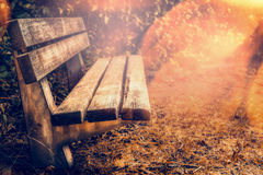 Empty bench in autumn garden or park Royalty Free Stock Images
