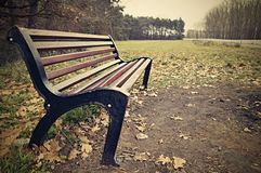 Empty bench in the autumn Royalty Free Stock Image
