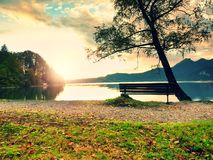 Empty bench at autumn mountain lake. Coast under bended tree Royalty Free Stock Photos
