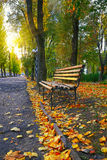 Empty bench in the autumnal park Royalty Free Stock Photo