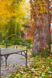 Empty bench in the autumnal park Royalty Free Stock Photos