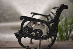 EMPTY BENCH. On the blurred background in the park Stock Photography