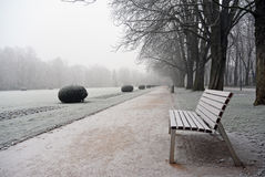 Empty bench in covered hoar-frost park a winter day Royalty Free Stock Photos