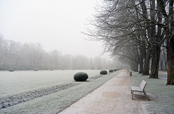 Empty bench in covered hoar-frost park a winter day Royalty Free Stock Photography