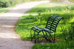 Empty bench beside a footpath on sunny day Royalty Free Stock Photography