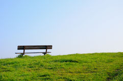 Empty bench on a green grass Royalty Free Stock Photo