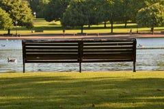 Empty bench  green sunny summer park Royalty Free Stock Photos