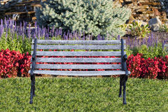 Empty Bench on a Landscaped Green Lawn Royalty Free Stock Photo