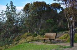 Empty bench near trees and bush stock photos