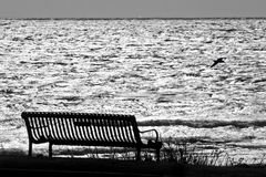 Bench by Ocean Waiting for Someone. Empty bench by the ocean with bird flying in the background stock photos