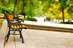 Empty bench in a park Royalty Free Stock Photo
