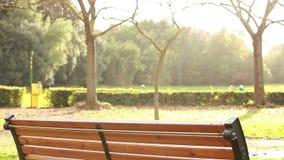 Empty bench stock video