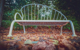 Empty bench in the park Stock Image