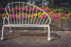 Empty bench in the park Royalty Free Stock Photography
