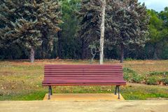 The empty bench in the park. Close view Royalty Free Stock Photo