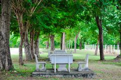 Empty bench in the park royalty free stock photo