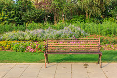Empty bench in a park Royalty Free Stock Photography
