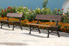 Empty bench in the park Royalty Free Stock Image