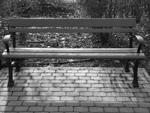 Empty bench in the park wintertime black and white furniture. Empty bench in the park wintertime black and white metal furniture Royalty Free Stock Photo