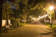 Empty bench on pathway at night. Landscape exterior Royalty Free Stock Photo